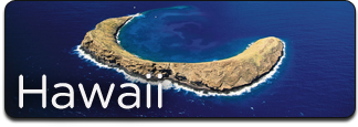 concierge_realty_buttons_hawaii