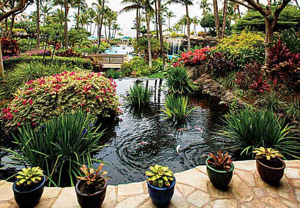 Marriott's Maui Ocean Club timeshare