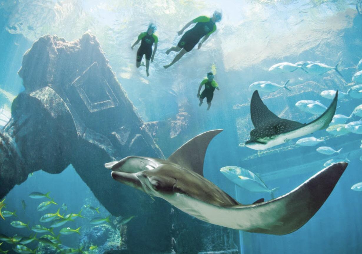 Atlantis's fun-filled amenities